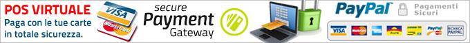 pagamenti online sicuri pos virtuale paypal